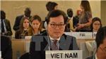Liên Hợp Quốc thông qua dự thảo nghị quyết do Việt Nam là đồng tác giả