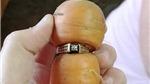 Tìm thấy nhẫn kim cương mất tích 13 năm trên củ cà rốt trong vườn