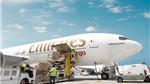 Emirates SkyCargo thúc đẩy xuất khẩu nhóm mặt hàng tươi sống từ Việt Nam sang UAE