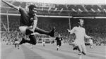 Sự nghiệp của 'Báo đen' Eusébio - Huyền thoại Benfica & Bồ Đào Nha