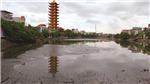 Hồ Dư Hàng ô nhiễm nặng, người Hải Phòng chịu hôi thối quanh năm