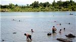 4 học sinh chết đuối ở Phú Yên, đã tìm thấy 3 thi thể