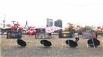 Giới trẻ Đà thành thỏa sức 'selfie' giữa 'vườn ô cổ tích' ngay tại cầu sông Hàn