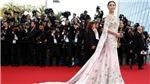 Tranh cãi tại LHP Cannes: Khi Phạm Băng Băng, Will Smith 'chễm chệ' ngồi ghế giám khảo