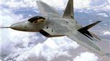 """""""Chim ăn thịt"""" F-22 bị đình chỉ hoạt động"""