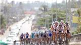 ADC Tour of Vietnam 2012: Hạt sạn từ công tác tổ chức