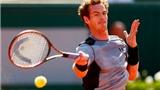Tứ kết đơn nam Roland Garros: Novak Djokovic tự tin, Andy Murray vất vả