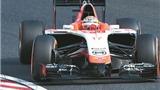 FIA treo số xe 17 của Jules Bianchi