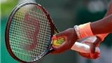 Siêu thị tennis: Sức mạnh từ những sợi ruột bò