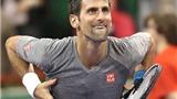 Djokovic xin lỗi vì đánh bóng vào khán giả