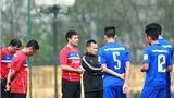 Các đội tuyển Việt Nam 'vào mùa'