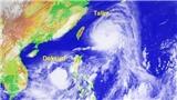 Trung Quốc lo lắng trước 'siêu bão kép' Talim và Doksuri mạnh chưa từng có