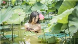 Dân mạng 'ném đá' dữ dội cô gái chụp ảnh khỏa thân dưới hồ sen
