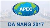 Đồ họa: Những hoạt động chính trong Tuần lễ Cấp cao APEC 2017