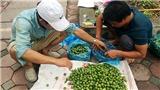Cận cảnh những 'cao thủ' trèo sấu kiếm tiền triệu mỗi ngày ở Hà Nội