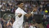 Tennis ngày 16/6: Djokovic phá lệ, dự giải tiền Wimbledon. Federer không bất ngờ khi thua trong ngày tái xuất