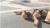 Điều tra vụ cảnh sát giao thông Hà Nội bị xe máy đâm trọng thương