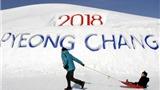 Hướng tới Olympic mùa đông 2018: Pyeongchang vẫy gọi