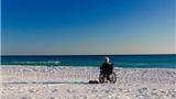 Thư châu Âu: Chuyện của những cụ bà muốn đi biển