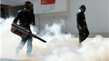 F1: Grand Prix Singapore và nỗi lo Muỗi đốt