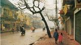 Nếu Hà Nội vắng mùa Đông?