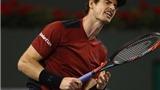 Andy Murray KHÔNG HIỂU vì sao mình bị loại sớm ở Indian Wells