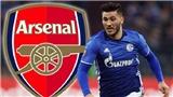 Arsenal đã có tân binh chất lượng đầu tiên cho mùa tới