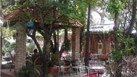 Uống cafe giữa không gian xanh & sống 'chậm' giữa Sài Gòn ồn ã