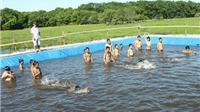 Không chỉ Mỹ, Bangladesh cũng bắt buộc phải học bơi. Còn Việt Nam?