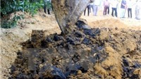 Vụ chôn chất thải Formosa: 'Cần đối chứng để có kết quả chính xác'