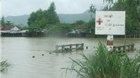 TIN MỚI: Mực nước các sông tại Phú Yên lên trở lại