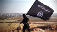 FBI bắt giữ 1 lính lục quân đang tại ngũ nghi có liên hệ với IS
