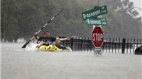 VIDEO: Siêu bão tàn phá Houston, đường phố thành sông, nhà ngập tận nóc