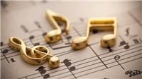 Phó Chủ tịch Hiệp hội Du lịch VN: Thu tác quyền âm nhạc qua ti vi ở khách sạn là tùy tiện
