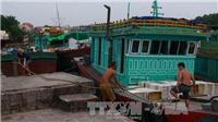 Đối phó áp thấp nhiệt đới, Hải Phòng cấm nhiều hoạt động trên sông, biển