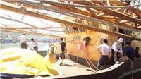 Công ty đóng tàu và ngư dân thống nhất phương án xử lý tàu vỏ thép hư hỏng tại Bình Định