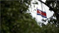 Bất ngờ triệu hàng loạt đại sứ về nước, Triều Tiên muốn 'đánh' hay 'hòa'?