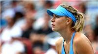 Tennis ngày 24/5: Zverev lần đầu lọt Top 10 của ATP. Sharapova lại được nhận suất đặc cách