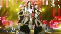 MBC Music K-Plus Concert: Fan Việt phấn khích muốn tràn lên gần sân khấu