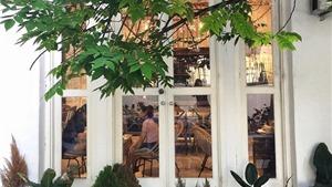 Quán cafe Hà Nội 'đốt mắt' giới trẻ với phong cách Châu Âu