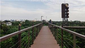 Từ bãi rác biến thành khu rừng xanh mát ngay trong lòng thành phố. Ngạc nhiên chưa?