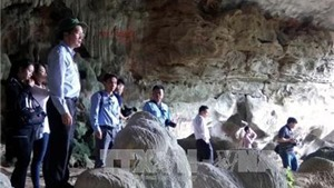 Không có hiện tượng chặt phá nhũ đá tại di sản Vịnh Hạ Long