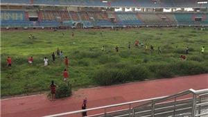 Cười ra nước mắt trước cảnh cắt cỏ ở sân bóng trăm tỷ Ninh Bình