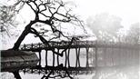 Chùm ảnh: Những tác phẩm về Hà Nội ấn tượng của NSNA Lê Vượng