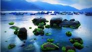 Khám phá đảo Bình Hưng - Khánh Hòa
