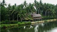 Chùm ảnh du lịch: Quảng Ngãi, 'Người đẹp ngủ trong rừng'
