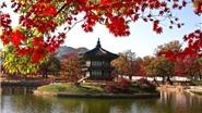 Kinh nghiệm du lịch - phượt Hàn Quốc mùa Thu