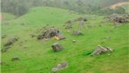 Đồng Cao, 'thảo nguyên' giữa núi đồi Bắc Giang