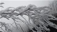 Hình ảnh băng giá lạnh buốt tại Sa Pa và Bát Xát, 3 vạn học sinh nghỉ học