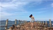 Bãi biển mới toanh ở miền Bắc, sống thật cũng tuyệt mà sống 'ảo' cũng hay